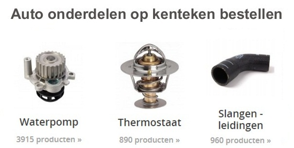 thermostaat vervangen